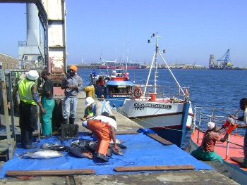 Discharging the catch